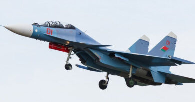 Самолет Су 30 Беларуси